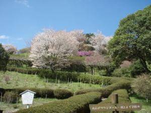 20080420弥高山3