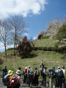 20080420弥高山4