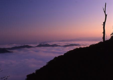 野迫川雲海1