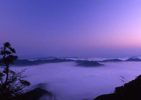 野迫川雲海2