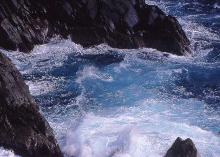 海金剛波しぶき1