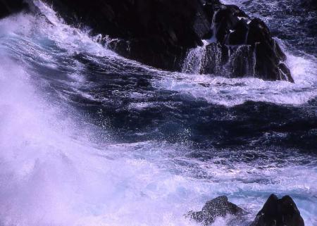 海金剛波しぶき2