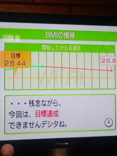 WiiFit1