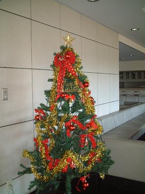 201120 015クリスマスツリー