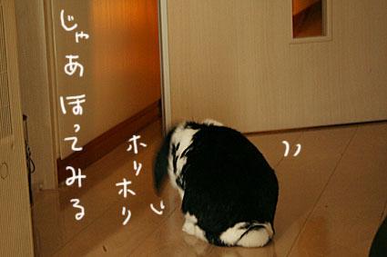 IMG_3040.jpg