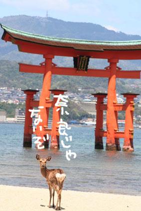 IMG_7680.jpg