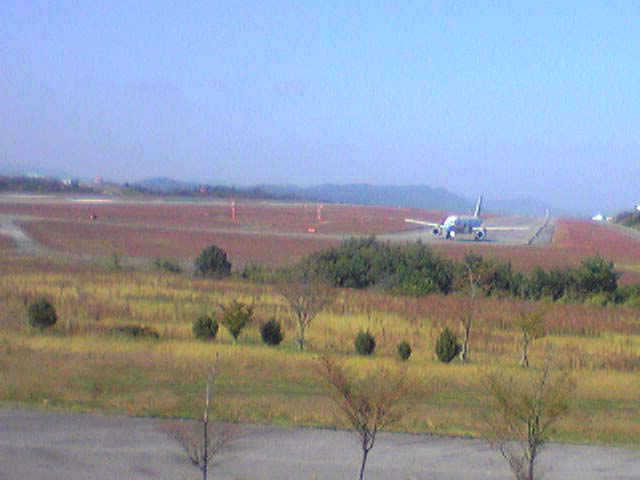飛行機の離陸を間近で見学