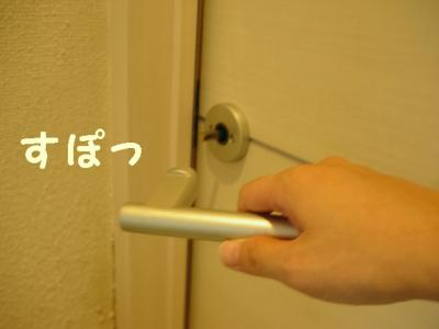 neko-090803-5.jpg