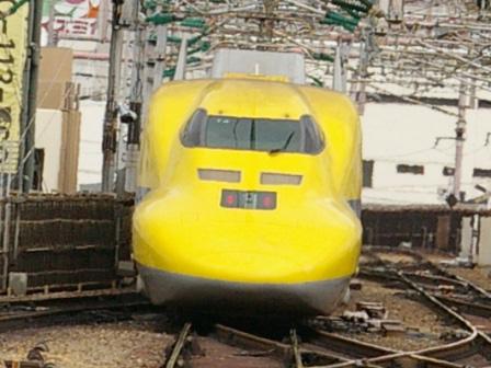 IMGP4559.jpg