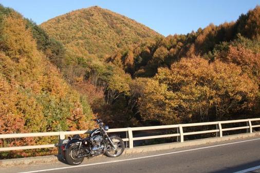 2008_1104湯沢~長野、紅葉ツー0013