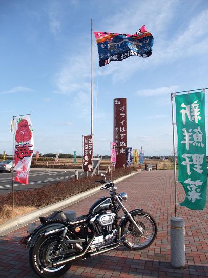 2009_010809、バイク成田山参0030