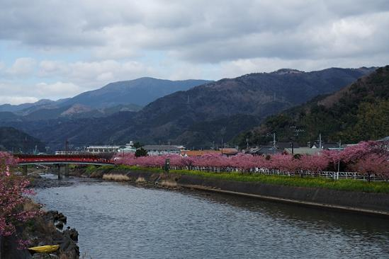 2009_0218河津 イージーツー0029