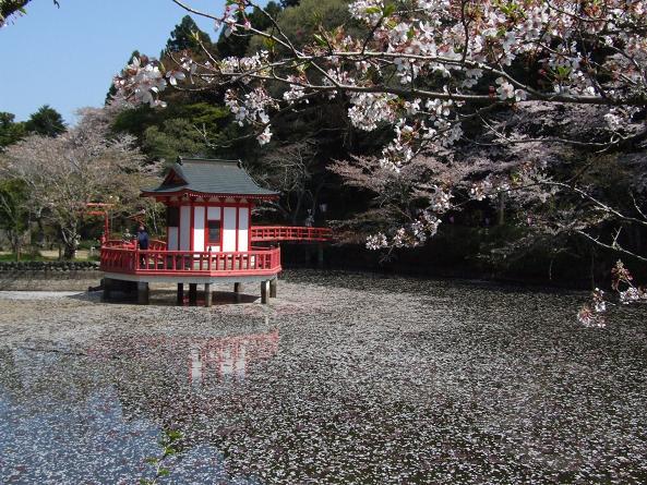 2009_0410春 ソロツー0005