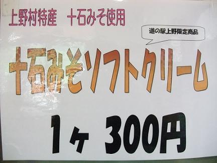 2009_0527けす0005