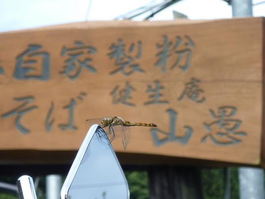 2011_0908戸田別館 0012