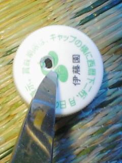 fugu112.jpg