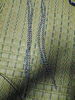 fugu122.jpg
