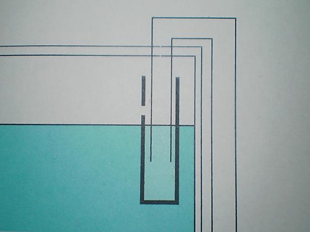 fugu197.jpg