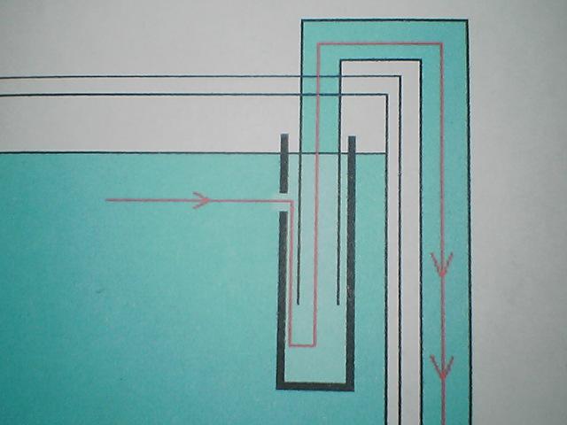 fugu198.jpg