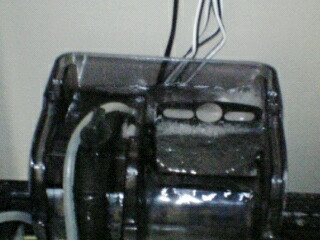fugu96.jpg