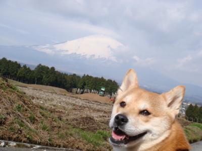 ふうがと傘雲