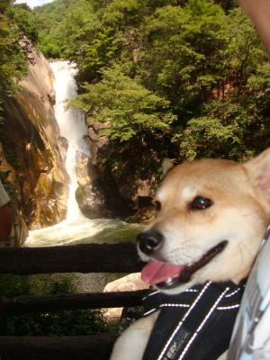 滝とふうが1