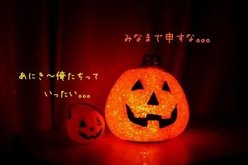 かぼちゃ 兄弟