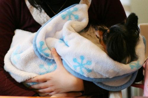 赤ちゃん抱っこ♪