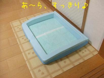 トイレのコピー
