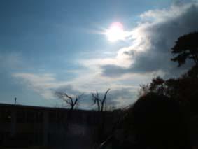 20051128163554.jpg