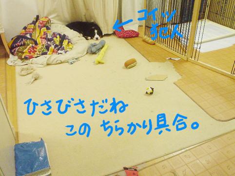 chirakari.jpg