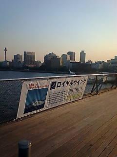 20080116154609.jpg