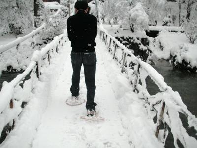 嵐渓荘 吊り橋