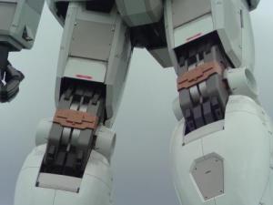 ひざ裏の間接部分
