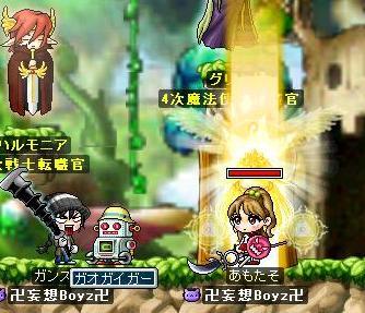Maple0003_20081203165236.jpg