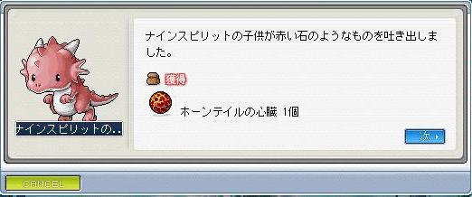 Maple0017_20090409131007.jpg