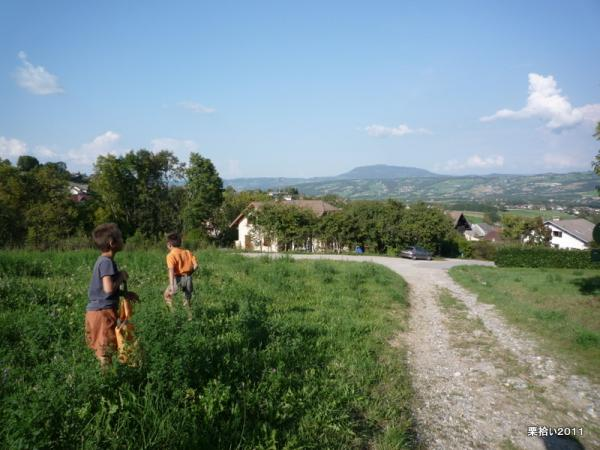P1520084.jpg
