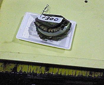 200812210819000.jpg