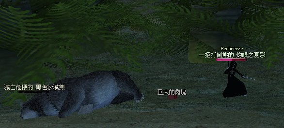 沙漠熊(2)