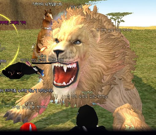 巨大獅子正面