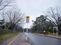 新潟大学五十嵐 (3)