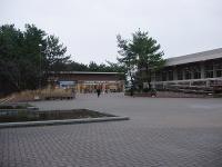 新潟大学五十嵐 (30)