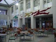 常磐大学 (18)