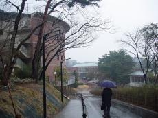 常磐大学 (33)