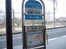 常磐大学 (6)