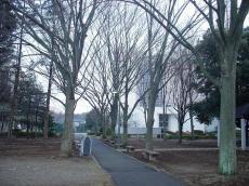 江戸川大学 (10)