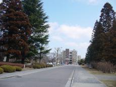 日本大学工学部 (7)
