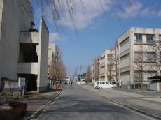 日本大学工学部 (39)
