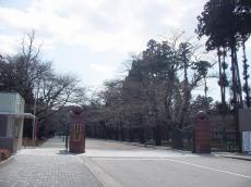 日本大学工学部 (51)