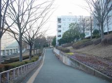 福島大学 (26)